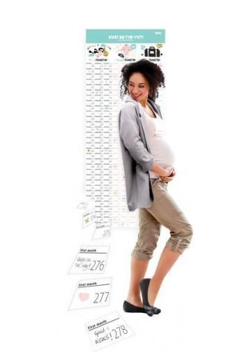 Calendario Baby
